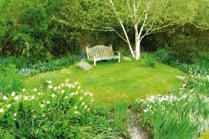 Zahradní architekt má vrukávu celou řadu šikovných pomůcek, díky nimž dokáže vykouzlit na zahradě úžasnou podívanou po celý rok. Praktickým pomocníkem jsou mimo jiné dřeviny satraktivní strukturou abarvou borky. Mezi favority jednoznačně patří břízy, některé javory nebo platany. FOTO LUCIE PEUKERTOVÁ