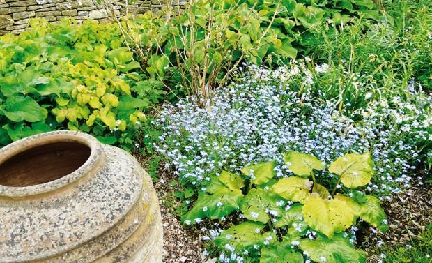 Plánování zahrady byste neměli podcenit