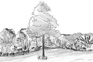Samotný projekt může být pro mnohé příliš abstraktní. Pokud si navržené terénní úpravy, technické prvky i rostliny nedovedete představit, vezměte do ruky tužku a nakreslete si jednotlivé části zahrady i zahradní detaily. Lépe si pak uvědomíte, zda návrh zahrady opravdu splňuje vaše požadavky. KRESBA LUCIE PEUKERTOVÁ