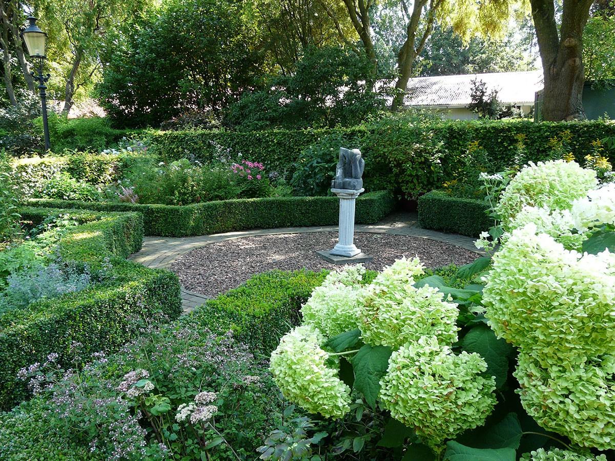 Hydrangea arborescens. FOTO: LUCIE PEUKERTOVÁ