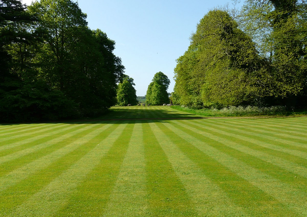 Tradiční anglické zahrady nelemují žádné vysoké stěny, které by omezovaly výhledy ven ze zahrady a naopak i pohledy do ní samotné. FOTO: LUCIE PEUKERTOVÁ