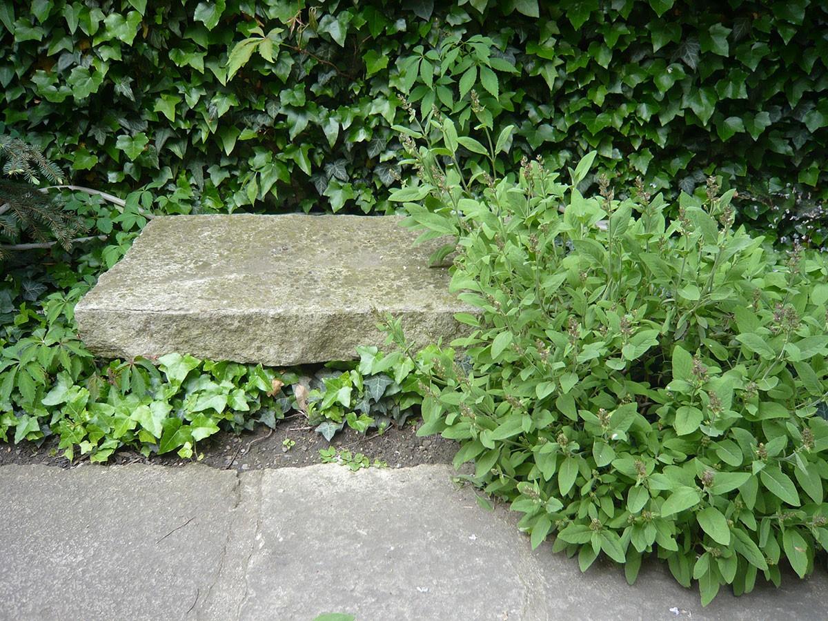 Kamenná lavice láká kposezení pod širým nebem.