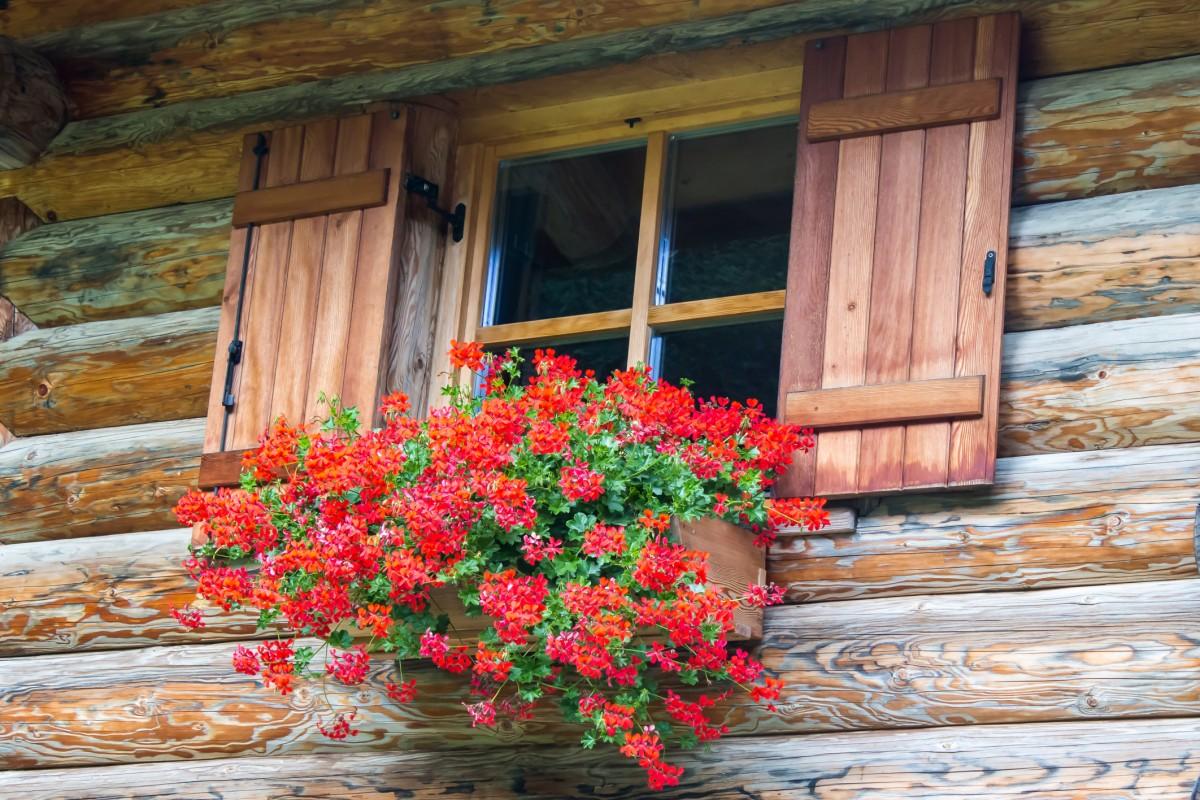 chaty - HOME Bydlení