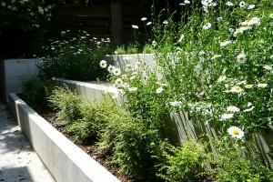 Moderní minimalismus v zahradě