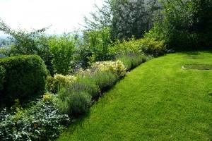 Jednoduchá koncepce zahrady s trávníkem a smíšeným keřovým záhonem. FOTO LUCIE PEUKERTOVÁ