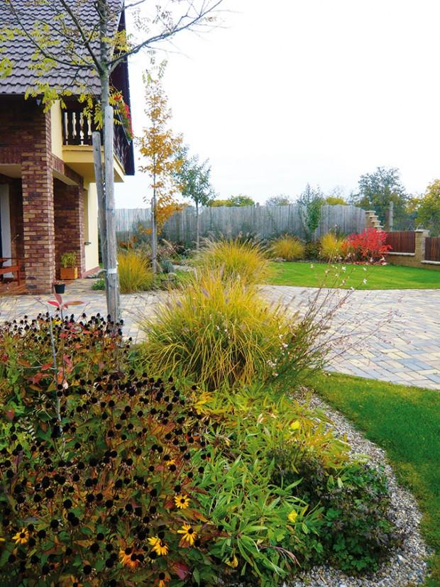 Zahradní architekti do kompozice navrhli hned několik solitérních stromů, které jsou součástí vegetace štěrkových záhonů.