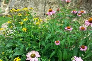 Květinové záhony se uplatňují díky barevnému kontrastu pestrých květů a jednoduchého konceptu zahrady. FOTO LUCIE PEUKERTOVÁ