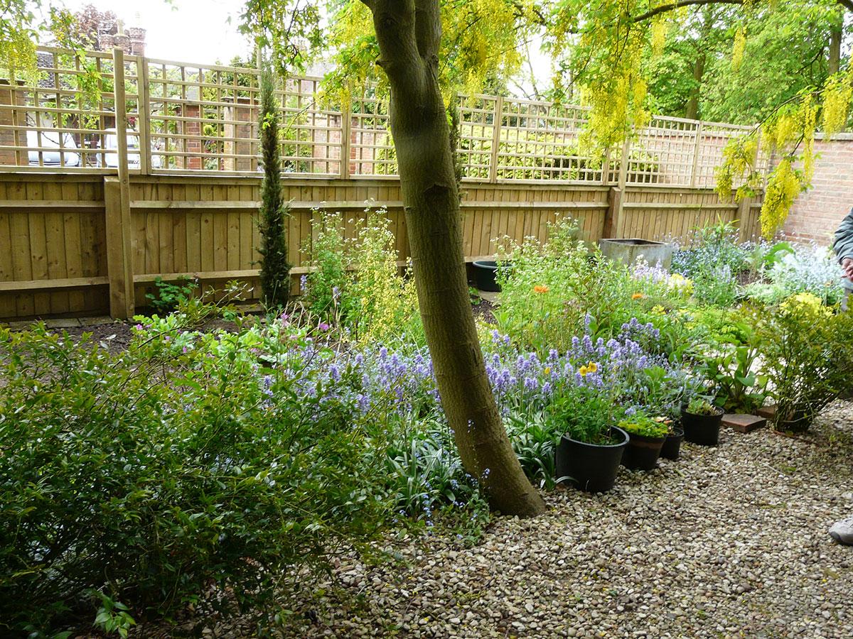 Zakládáme zahradu na komplikovaném pozemku