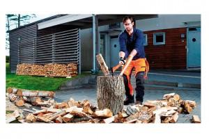 Praktické rady ohledně výběru, zpracování i uskladnění dřeva