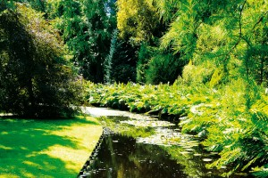 Pestrá přehlídka rostlin v nádherné holandské zahradě