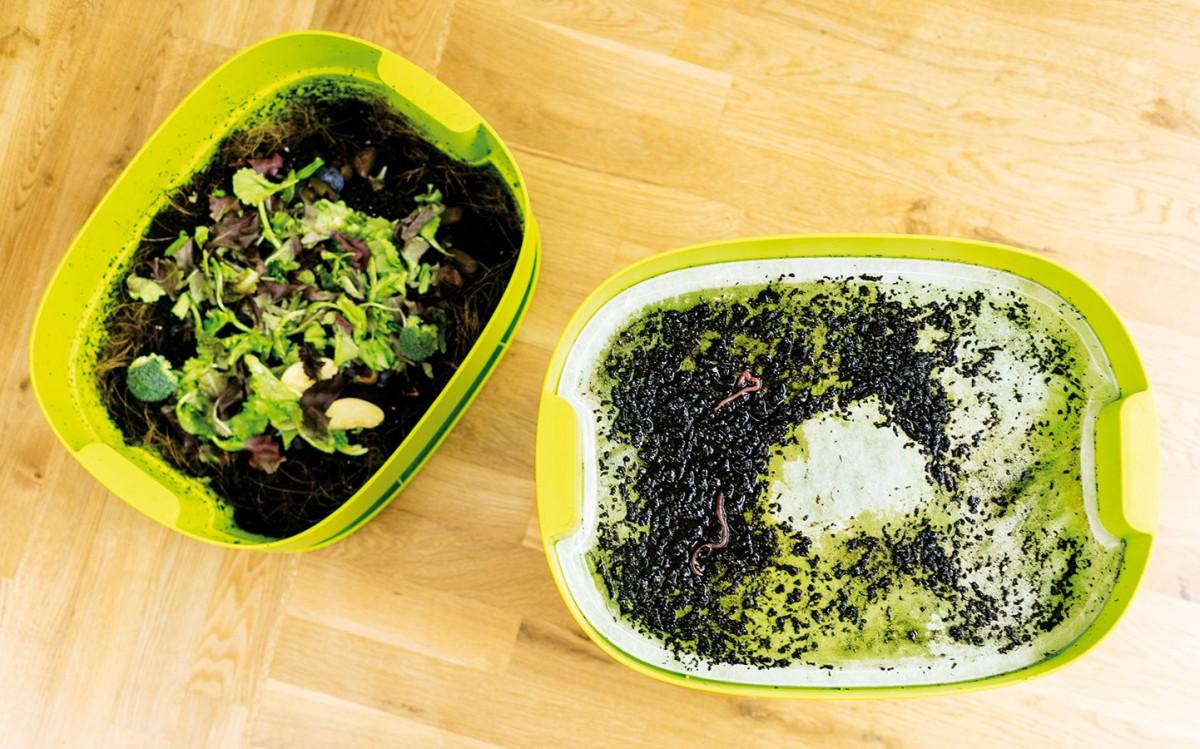 Největším problémem vermikompostování bývá špatná podestýlka. Přibývající zbytky jídla obsahují vodu − mohou zpomalit kompostovací proces asnížit množství žížal ve vermikompostéru. Nutné je tedy lůžko udržovat přiměřeně vlhké aprovzdušněné. FOTO PLASTIA