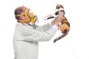 Rady a tipy pro úspěšný boj s alergií