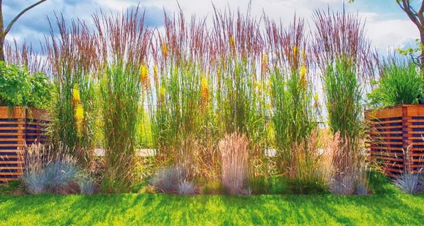 Méně je více. Barevné kontrasty zahradních staveb avýsadeb působí dobře idíky tomu, že se stále více klade důraz na střízlivý výběr barev vysazovaných rostlin.