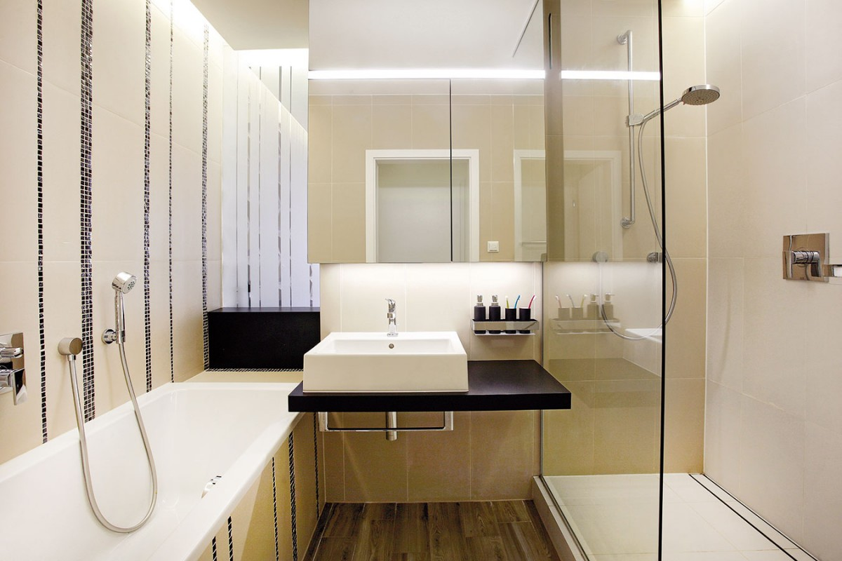 Denní světlo proudí do koupelny přes plochu zpískovaného skla, která ji zároveň odděluje od kuchyně. FOTO DAVID TRČKA