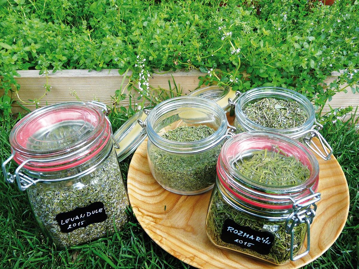 Pěstování isamotná sklizeň bylinek mají své kouzlo, díky kterému zapomenete na shon dnešní doby. Navíc je to příjemný relax aaromaterapie. Trendem poslední doby je domácí výroba koření, bylinných směsí určených na přípravu léčivých čajů nebo výroba přírodní bylinné kosmetiky. FOTO LUCIE PEUKERTOVÁ