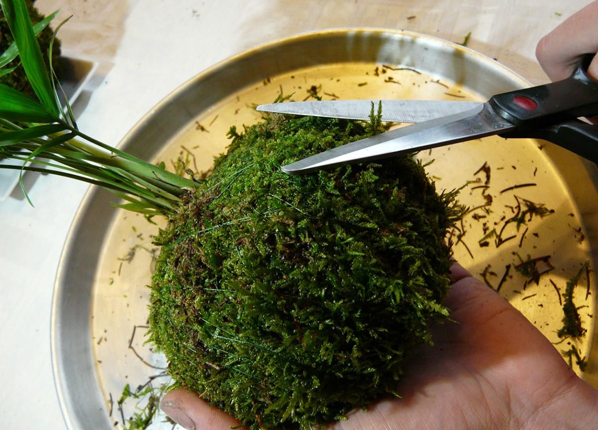 Uprava mechove koule foto: Lucie Peukertová