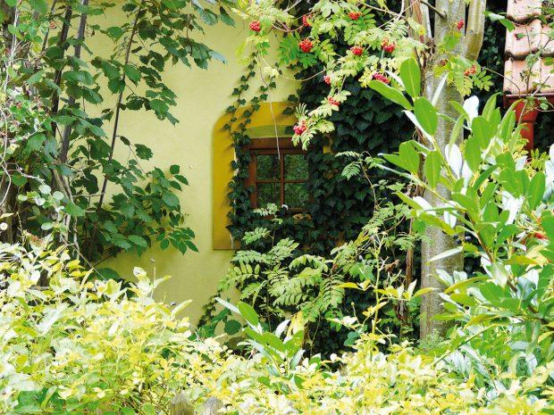 Styl venkovské zahrady spočívá vjemných detailech, které ovšem neplní pouze estetickou funkci, ale zároveň se snoubí spraktičností. Vkompozici tedy mají své místo především multifunkční rostliny, které spojují krásu sužitkem. FOTO LUCIE PAUKERTOVÁ