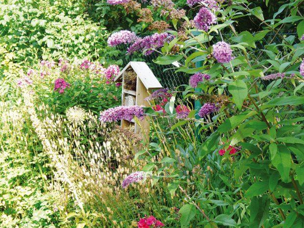 Při plánování zahrad se snažíme dodržet iněkteré ekologické aspekty, díky nimž se do zahrady nastěhuje celá řada užitečných živočichů, kteří nám přirozenou cestou pomohou udržet rovnováhu mezi organismy. Užitečné pomocníky nalákejte do hmyzího hotelu, který můžete umístit například do rozkvetlého trvalkového záhonu. FOTO LUCIE PAUKERTOVÁ