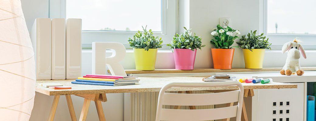 Jak vybírat vhodné druhy rostlin do dětského pokoje