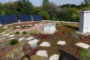 Možnosti střešních zahrad