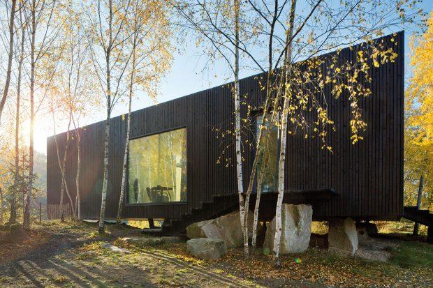 Založení domu na žulových blocích umožnilo ponechat vtěsné blízkosti stavby ivzrostlé břízy. FOTO TOMÁŠ RASL