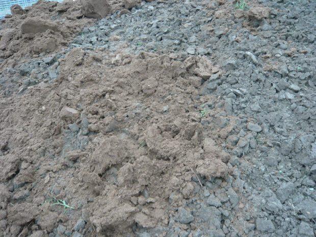 Míchání rašeliny se zahradní zeminou. foto: Lucie Peukertová