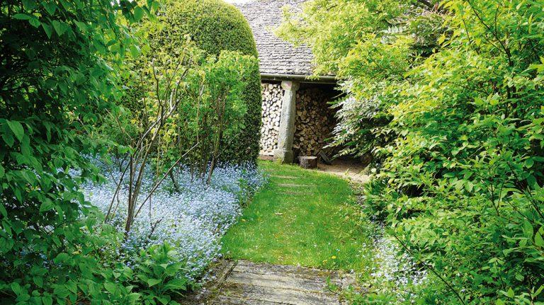 Jak na plánování zahrady ležící ve stínu