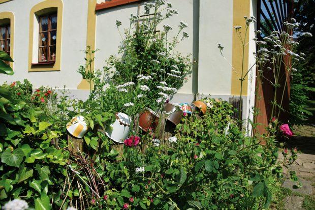 Majitelé zahrady nenechávají nic náhodě. Venkovský styl zahrady se nezapře ani na předzahrádce, kde plaňkovému plotu vévodí barevné hrníčky. Za plotem pak nerušeně rostou tradiční venkovské trvalky anespočet osvědčených druhů bylinek. FOTO LUCIE PEUKERTOVÁ