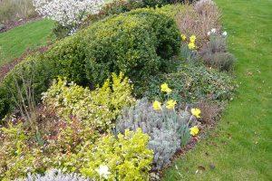 Co by nemělo chybět v celoročně aktivní zahradě