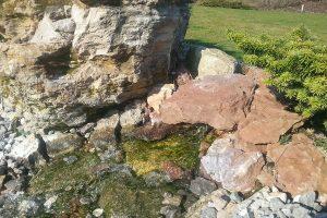 V celoročně atraktivní zahradě oceníte i atraktivní detaily v podobě zajímavého kamene. foto: Lucie Peukertová