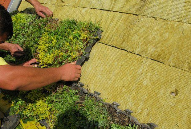 Osazování šikmé zelené střechy s hydrofilní minerální vlnou ISOVER foto ISOVER