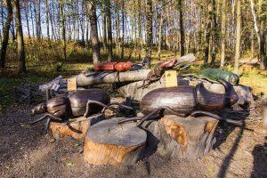 Zdroj Nadace dřevo pro život