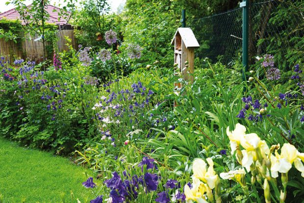 Přírodní květinovou zahradu často zakládají zahrádkáři bez předchozího projektu. FOTO LUCIE PEUKERTOVÁ
