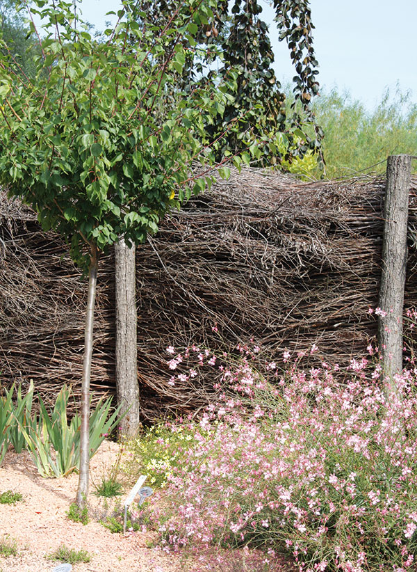 Nastříhané suché větve můžete po zimě využít itakto. Vznikne vskutku originální, ikdyž jen dočasný plot vpřírodním stylu. FOTO DANIEL KOŠŤÁL