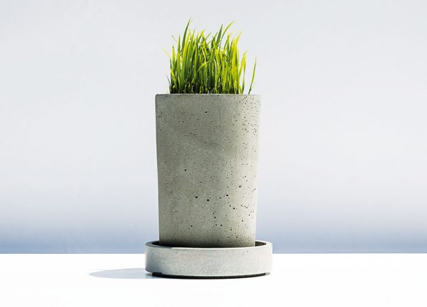 Jednoduchou a efektní dekorací je svěží velikonoční obilíčko. Můžete ho přizdobit dalšími dekoracemi, nebo nechat růst jen tak.