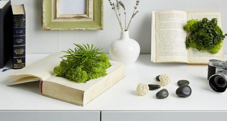 Originální způsob, jak si přenést čerstvou zeleň domů