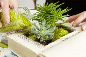 9. DOPLNENÍ Nakonec prostor mezi rostlinami doplníme dekoračními kamínky nebo pískem. Foto: Möbelix