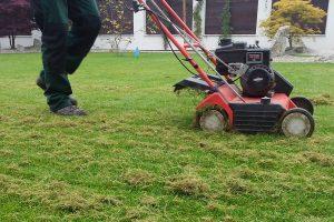 Jarní péče o okrasný trávník