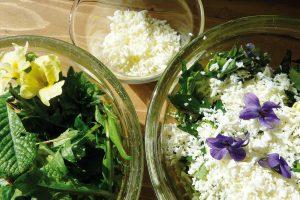 Zvypěstované zeleniny si lze připravit třeba výborné saláty nebo pomazánky. FOTO LUCIE PEUKERTOVÁ
