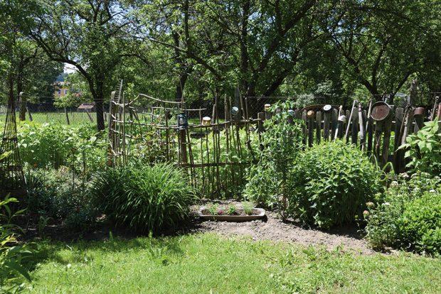Samozásobitelská zahrada přináší nové možnosti