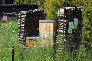 Včelaření se opět vrací do módy imezi mladými zahrádkáři. FOTO LUCIE PEUKERTOVÁ
