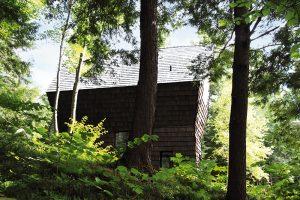 Odstín dřevěných obkladů je k nerozeznání od odstínu kmenů jehličnanů. Dům jako by si vytvořil ochranné mimikry. FOTO FRANCIS PELLETIER