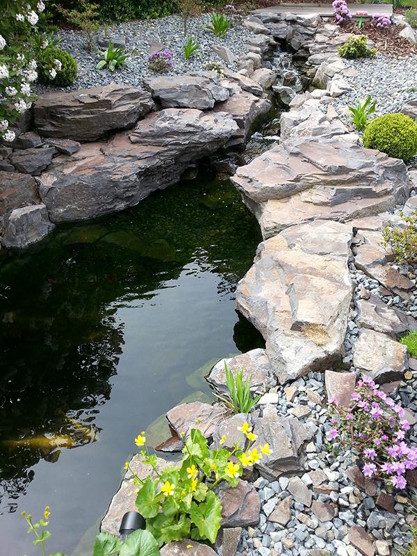 Na podzim je třeba vyčistit jezírko a zazimovat technologii, která se stará o čistotu vody.