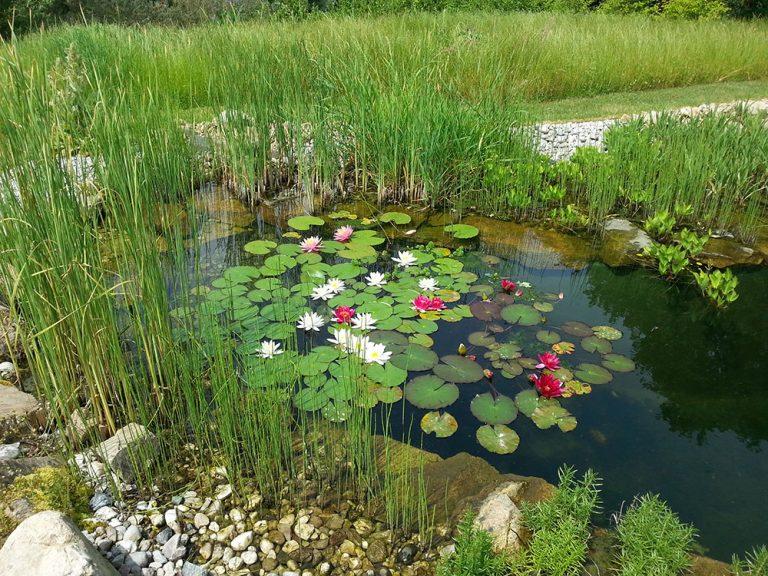 Krásné vodní prvky do různých stylů zahrad