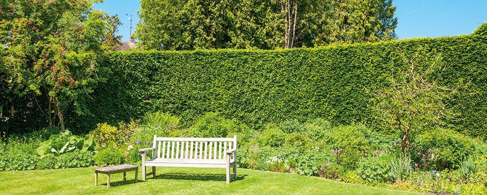 Oživte svou zahradu – zástěnou a osvětlením