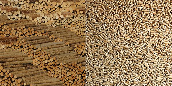 Dřevěné pelety. Čím vyšší obsah dřeva, tím jsou kvalitnější