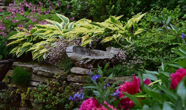 Plánujeme celoročně efektní zahradu