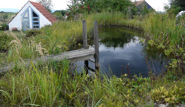 Vodní prvky do různých typů zahrad