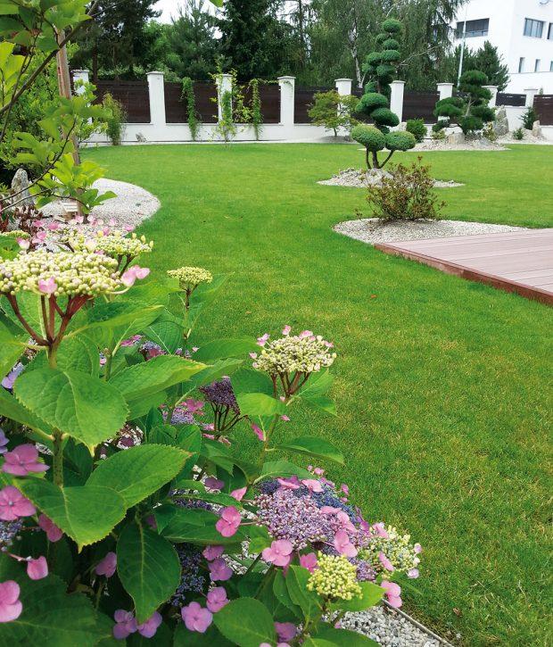Aby byla údržba zahrady co nejjednodušší, snažte se dělat věci smysluplně. FOTO LUCIE PEUKERTOVÁ