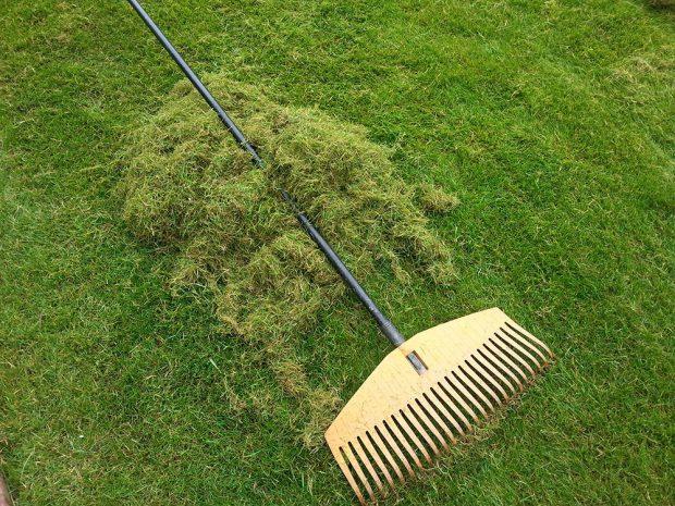 Nezapomeňte na vertikutaci trávníku. foto: Lucie Peukertová